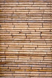 Tropical bamboo wall Stock Images