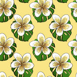 Tropical banana flovers and Monstera leaf,. Tropical banana flovers seamless pattern, vector illustration Royalty Free Stock Photography