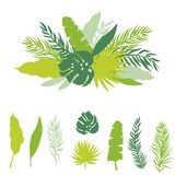 Set of palm leaves silhouettes. Tropical banner from green palm leaves isolated on white background. Vector illistration Royalty Free Stock Photography