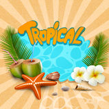 Tropical banner with seashells, starfish Stock Photo
