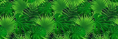 Tropical banner. vector illustration. jungle plants, palms leaves background. Green foliage seamless pattern. Repeated stock illustration