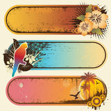 Tropical Banners. Vector set of three exotic grunge tropical banners Stock Photo
