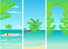 Tropical banners Stock Image