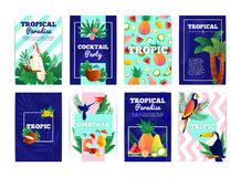 Tropical Banners Cards Set Stock Photos