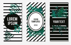 Tropical banners. Flyer design template with striped background and exotic tropic leaves. Fashionable invitations, advertisement b Royalty Free Stock Photography