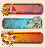 Tropical Banners Set Royalty Free Stock Photo