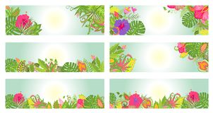 Tropical banners Stock Photography