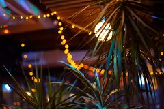 Tropical bar athmocphere background with yellow garland bokeh. vacation night life concept.  stock photos
