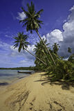Tropical beach. Royalty Free Stock Photography