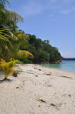 Tropical beach. On the paradise beach, Indonesia Stock Images