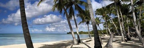 Tropical beach Stock Image