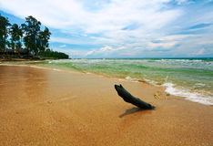 On the tropical beach. Bad weather on the sand tropical beach. Phuket island. Andaman sea. Kingdom Thailand Stock Photos