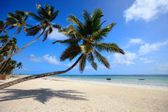 Tropical beach. White sand tropical beach with palm trees on north-west coast of Zanzibar island Stock Photo