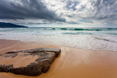 On the tropical beach Stock Photo