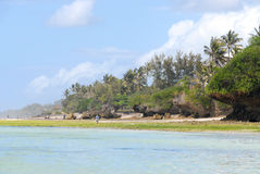 Tropical beach. Low tide on a Mombasa beach, Kenya Royalty Free Stock Photography