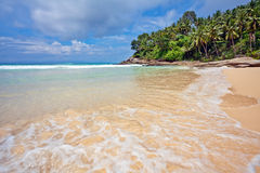 On the tropical beach Royalty Free Stock Images