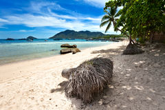 On the tropical beach Stock Photo