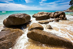 On the tropical beach royalty free stock photography