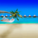 Tropical Beach. With Bungalows and blue sky Stock Photo