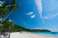 Tropical Beach Stock Photography