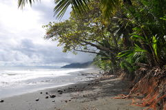 Tropical beach. In Costa Rica Royalty Free Stock Photography