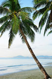 Tropical beach. At sanya island Stock Photos