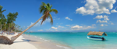 Tropical Beach. In Dominican Republic royalty free stock images
