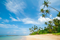 Tropical beach. Untouched tropical beach in Sri Lanka Royalty Free Stock Photography