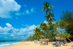 Tropical beach. In Sri Lanka. Man reading book sitting on the desk chair Stock Photo