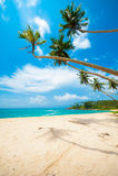 Tropical beach. Untouched tropical beach in Sri Lanka Stock Photo