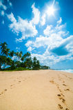 Tropical beach. Untouched tropical beach in Sri Lanka Stock Images