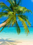 Tropical beach. On the island Vilamendhoo in the Indian Ocean, Maldives Royalty Free Stock Image