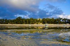 Tropical beach. A tropical beach in Mombasa, Kenya Stock Images