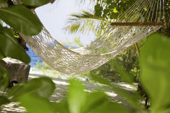 Tropical beach. Hammock in a garden near the sea Royalty Free Stock Photography