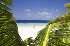 Tropical beach. Foreshortening of a beach. Useful as a frame Royalty Free Stock Image