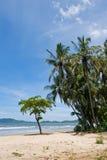 Tropical Beach. View over Tamarindo beach, Costa Rica Pacific Coast Royalty Free Stock Photos