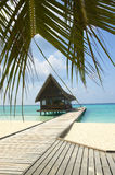 Tropical beach. Typical jetty on the tropical beach Stock Photo
