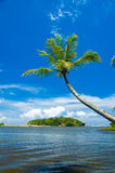 Tropical beach Stock Image