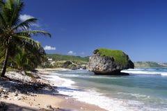 Tropical Beach. Beautiful caribbean beach Stock Photography