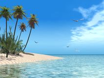 Tropical beach. 3d render of a tropical beach Stock Images