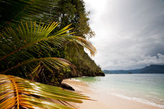 Tropical Beach. A tropical secluded beach with water and trees Stock Image