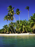 Tropical beach. The ultimate beach Royalty Free Stock Photography