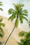 Tropical beach Stock Photo