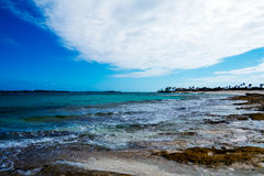Tropical Beach With Algae Royalty Free Stock Photo