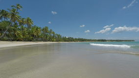 Tropical beach. Amazing natural beach in the dominican republic stock video footage