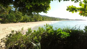 Tropical beach. Amazing natural beach in the dominican republic stock footage