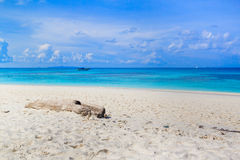 Tropical beach of Andaman Sea in Tachai island Stock Photography