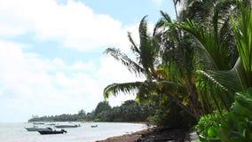 Tropical beach of Anse Volbert, Praslin island, Seychelles. Tropical beach of Anse Volbert, Seychelles stock video footage