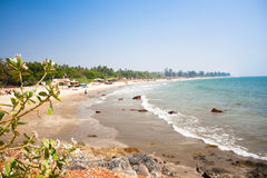 Tropical beach in Arambola,Goa, India Royalty Free Stock Images