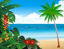 Tropical beach background Royalty Free Stock Photo
